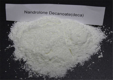 Nandrolone steroid